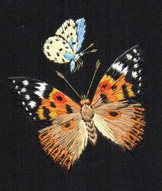 Broderie papillon