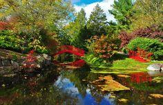 Fall day in Dow Gardens - Midland, MI - Courtesy of Steve Trumbull