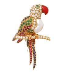Nardi Pearl Multi Gem  Macaw Brooch | From a unique collection of vintage brooches at http://www.1stdibs.com/jewelry/brooches/brooches/