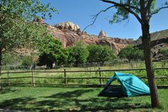 These campsites are first come, first served, and they fill up fast. Get there early for the best spot - check out time for the previous night's campers is 11:00 am. Campsites are just $20 per night ($10 for seniors).
