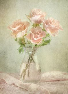 Mandy Disher - photographer, who lives in Ramsey, Cambridgeshire, England.