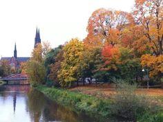 Autumn. Uppsala, Sweden, Autumn, River, Outdoor, Outdoors, Fall, Rivers, Outdoor Games