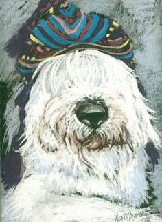 Portrait of a shaggy dog in hat