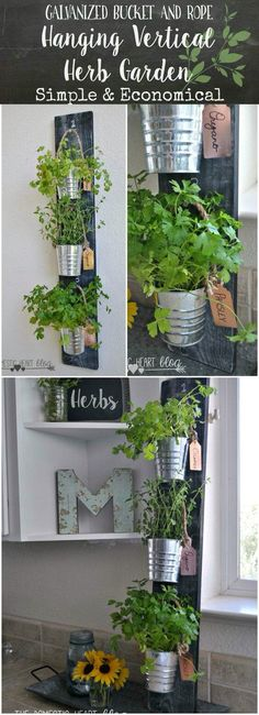 Kitchen garden country chic display house idea