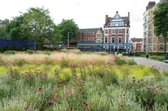 Potter's Fields, a public park in London, features plantings arranged in drifts, which convey a sense of movement.