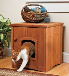 i wonder if this would work? Put a litter box in there? Then you wouldn't have to SEEE it, but you could open the door and clean it out easily? Sounds reasonable to me! :)