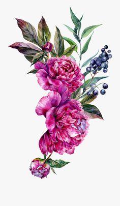 Art Floral, Floral Frames, Watercolor Artwork, Watercolor Print, Watercolor Flowers, Peony Flower, Flower Art, Illustration Blume, Floral Illustrations