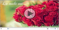 Felicitari muzicale de zi de nastere pentru Cuscra | felicitarimuzicale.com Motto, Rose, Flowers, Plants, Google, Pink, Roses, Flora, Plant