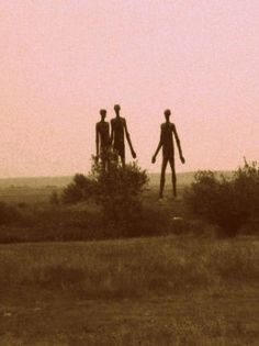 10 Shocking Secrets About The Tall White Aliens Revealed by Charles Hall - Alien UFO Sightings Les Aliens, Aliens And Ufos, Ancient Aliens, Alien Aesthetic, Aesthetic Vintage, Arte Obscura, Alien Art, Arte Horror, Cryptozoology