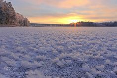 Winter morning by ginaups