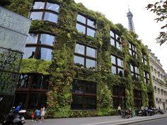 Quia Branly - Paris Fachada Verde