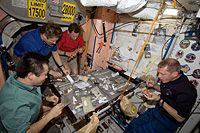 Expedition 20 crewmembers share a meal