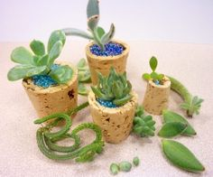 Ingenious Wine Cork Planters For Your Little Plants Mini Plants, Little Plants, Real Plants, Dollar Store Crafts, Dollar Stores, Do It Yourself Garten, Mini Vasos, Decoration Plante, Wine Cork Crafts
