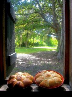 I have wonderful memories of walking up the hill from the school bus and smelling Mom's everlasting yeast bread hot out of the oven. My brother Dean and I could eat a pan of bread like this with real home molded butter on the rolls before we went to get cows in the lot and get ready to milk. Ray 5/7/13