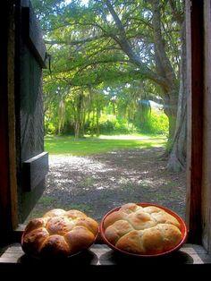 bread cooling on a windowsill