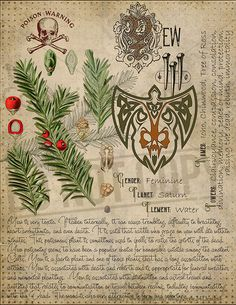 Book of Shadows page. Sorry, This page is only available to my customers for free, I don't sell it in the Etsy Magic Herbs, Herbal Magic, Wiccan Spell Book, Witch Spell, Grimoire Book, Wiccan Magic, Witch Herbs, Witchcraft For Beginners, Magick Spells