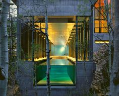 Clear Walled Infinity Pools. Indoor Cantilevered Lap Pool Extends Into the Forest