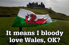 It's impossible to translate 'hiraeth' into English. Welsh problems: 44 things you only have to deal with if you're Welsh - Wales Online Welsh Rugby Team, Learn Welsh, Welsh English, Wales Map, Wales Rugby, Welsh Dragon, Anglesey, Cymru, Swansea