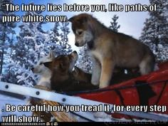 The future lies before you, like paths of pure white snow. Be ...