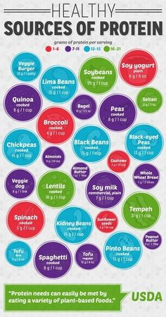 Proteins for Vegetarians, part 3