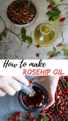There has been so much going on around rosehip seed oil lately. Many celebrities are getting younger every day from using pure rosehip seed oil so I started to investigate. Is it true or just a myth? Healing Herbs, Medicinal Herbs, Natural Health Remedies, Herbal Remedies, Natural Medicine, Herbal Medicine, Salve Recipes, Making Essential Oils, Herbal Oil