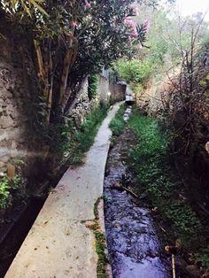 Andros, Greece Andros Greece, Travel Around, Grape Vines, Travelling, Greek, Journey, Magic, Island, Photos