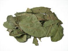 En infusión, las hojas de laurel son capaces de aliviar las molestias estomacales (reducen los gases, son buenas para los espasmos intestinales y ayudan a tener una correcta digestión) y mejorar los dolores renales.Gloria Amaya