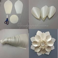 Want to learn to make a paper rose check out my online class on january i will be showing how to make paper flowers paper roses… – Artofit Big Paper Flowers, Paper Flower Wall, Paper Flower Backdrop, Giant Paper Flowers, Diy Flowers, Fabric Flowers, Flower Diy, Flower Ideas, Diy Paper