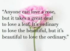 anyone can love a rose....