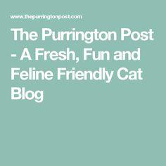 The Purrington Post - A Fresh, Fun and Feline Friendly Cat Blog