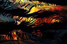 Rice Fields That Resemble Broken Glass