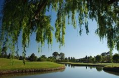 Who would have thought as the locals call the biggest city of would boast such a scenic Golf Course. Public Golf Courses, Best Golf Courses, St Andrews Golf, Coeur D Alene Resort, Augusta Golf, Golf Course Reviews, Coeur D'alene, Palm Desert, Top Destinations