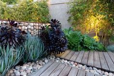 Simple, effective and low maintenance garden concept  with gabion wall incorporated