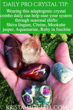 Adaptogenic crystals for seasonal changes / Online Pro Crystal Healer Course CCH / krista-mitchell.com