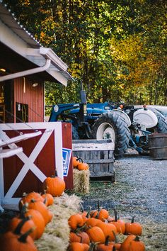 pumpkins, tractor, and barn by beth kirby