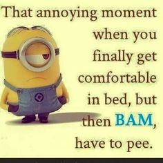 Funny Minions from Seattle PM, Saturday August 2016 PDT) - 30 pics - Minion Quotes Funny Minion Memes, Minions Quotes, Funny Jokes, Minion Humor, Hilarious, Minion Pictures, Funny Pictures, Just For Laughs, Just For You