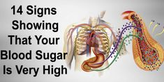Glucose is the vitality hot-spot for your own body. The sugar sum from the blood is shown with the measurements of sugar. People Who experience the ill effects of the disease have dimensions of sugar That's identified with various factors, for example: #highbloodsugarsymptoms,highbloodsugarremedies,highbloodsugarlevels,highbloodsugarsymptomssigns High Blood Sugar Symptoms, Blood Sugar Levels, High Gi, High Glucose, Diabetic Test Strips, Regulate Blood Sugar, Body Cells, Tomato Juice