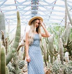 A Fashion Story and Cactus. Fashion Photography, Wedding Photography, Sunshine Coast, Fashion Story, Wedding Photos, High Fashion Photography, Wedding Pictures