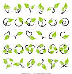 Design Logo using Vines - Yahoo Image Search Results