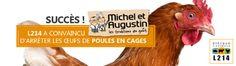 Michel et Augustin arrêtent les oeufs de batterie
