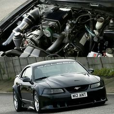 Sn95 Mustang, New Edge Mustang, Mustang Engine, 2000 Ford Mustang, Fox Body Mustang, Ford Mustang Shelby Gt500, Car Ford, Vintage Mustang, Ford Parts