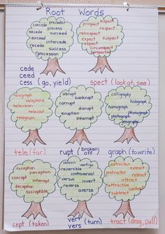 Root Words