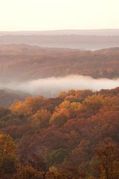 This 40-mile drive takes you through some of the prettiest towns and scenery in Indiana - scenic Hwy 46 to Nashville.