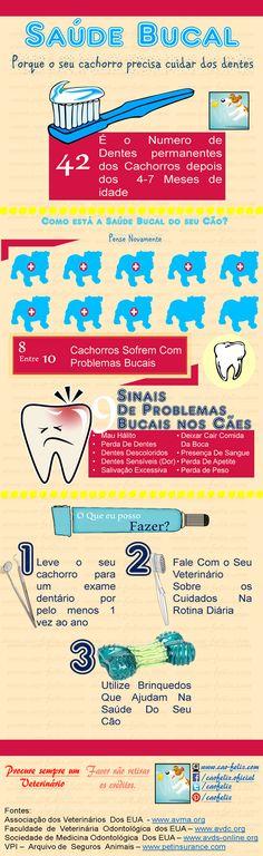 Infográfico: Saúde Bucal dos Cães