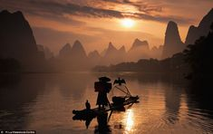 Sunset of a tradition: This picture is one of a host of arresting images taken in Chinas Guangxi Zhuang region to record the ancient art of the cormorant fisherman who, instead of lines and hooks, send the birds to snare fish for them