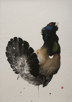 Capercaillie by Karl Martens. An elegant portrayal of the unmistakable woodland grouse, the Capercaillie. As this rare bird raises its blue tinged head, the intense black feathers on its grand plume stand still in the morning sunlight.