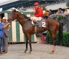 Mr. Prospector, Encore's great-grandfather, during his racing days.