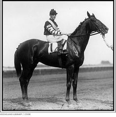 War Admiral(1934)Man O' War- Brush Up By Sweep.26 Starts 21 Wins 3 Seconds 1 Third. 1937 Triple Crown Winner. 1937 Horse Of The Year. 1945 U.S. Leading Sire. Died In 1959.