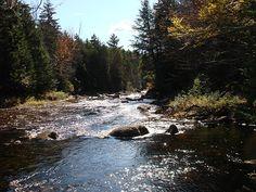 Cold River, Adirondacks