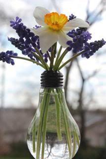 Light bulb vase.